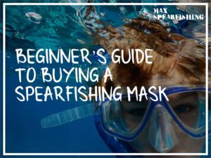 beginners guide to buying a spearfishing mask