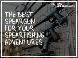 the best speargun for your spearfishing adventures