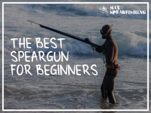 best speargun for beginners