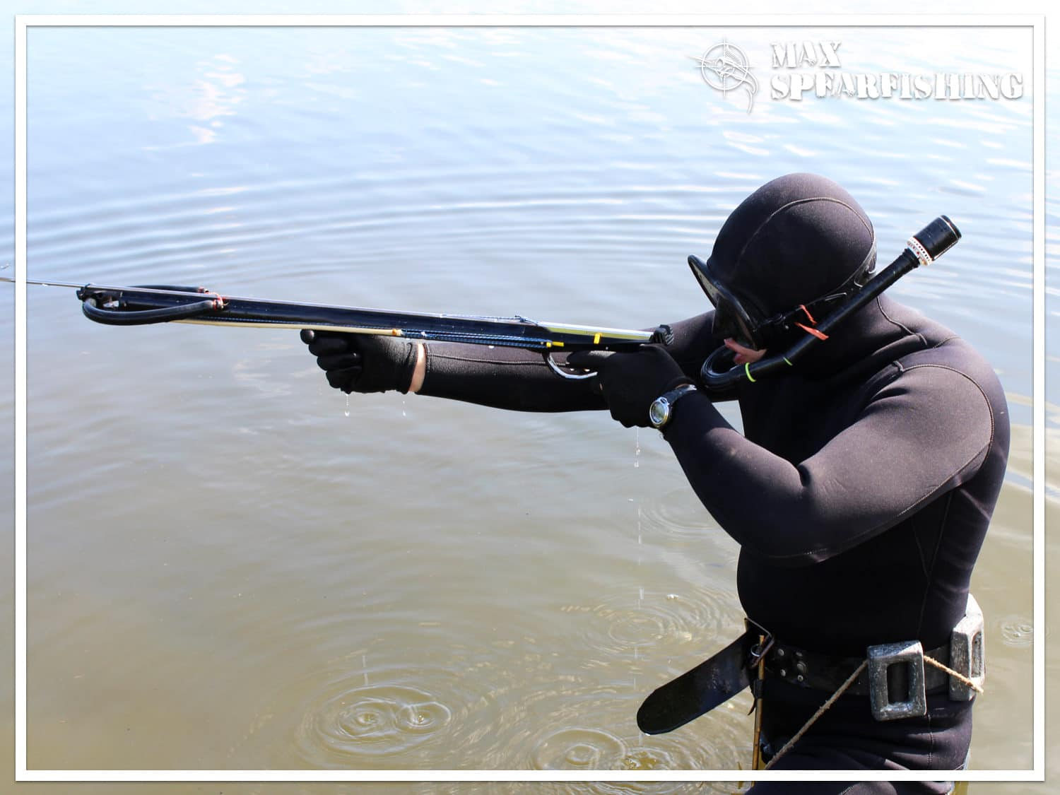 buy the best speargun for beginner spearfishing