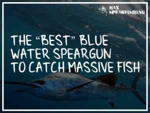 the best blue water speargun to catch massive fish