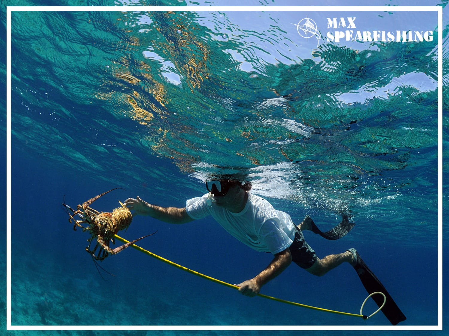 best pole spear for spearfishing bahamas