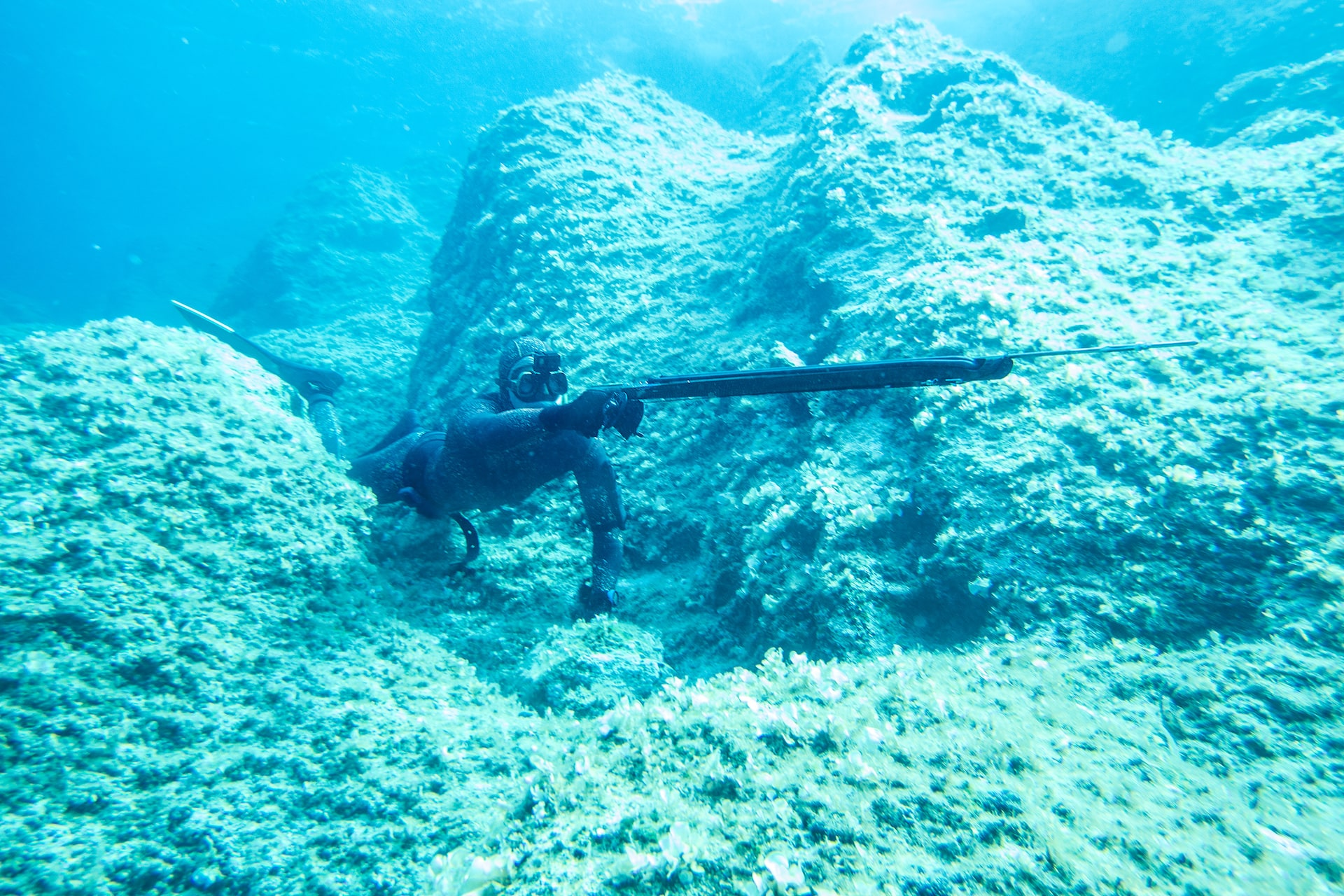 is spearfishing better than line fishing