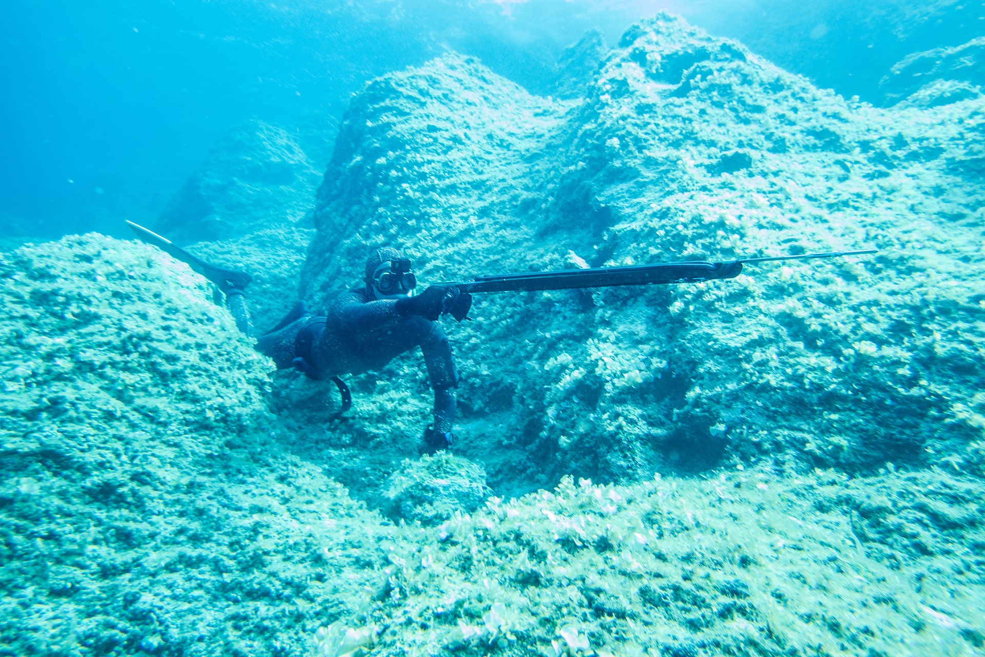 Spearfishing Equipment to Boost Your Fish-Catching Game