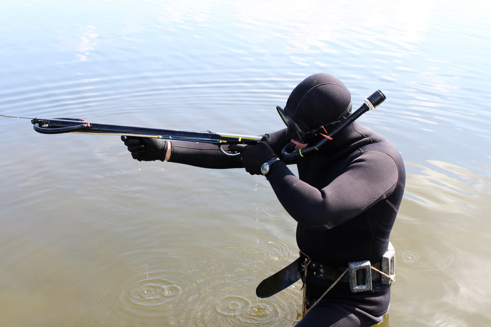 spearfishing with speargun